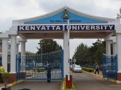 Carnegie African Diaspora Fellowship 2020 - Kenyatta University
